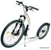 Kickbike Cross Max 20 HD