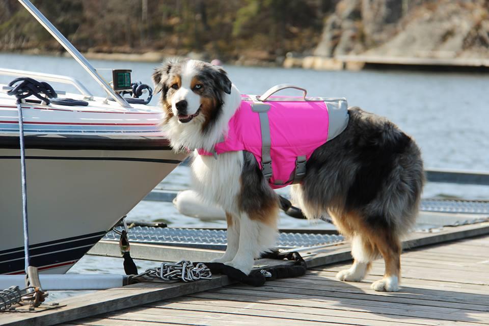 hurtta_lifesavior_boat