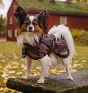 hurtta_torrent_coat_brown