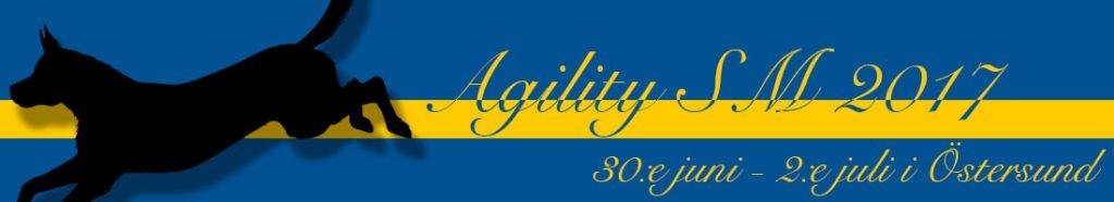 agilitysm2017