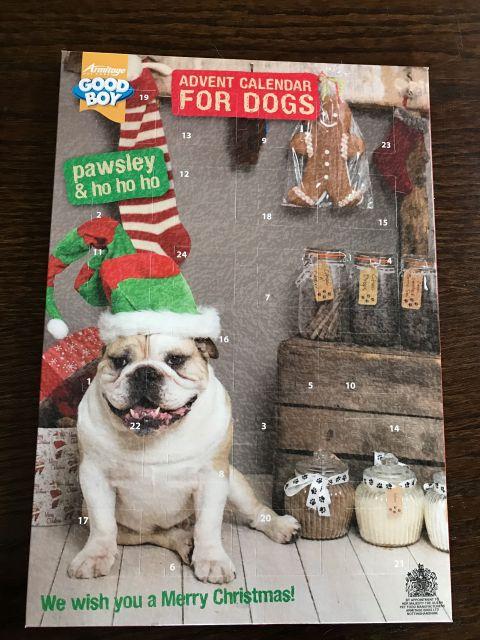 julkalender till hund