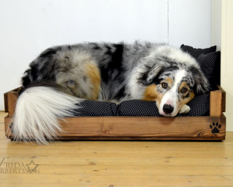 Hundsäng med träram