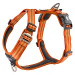 CWA-Harness-OrangeSun-V1
