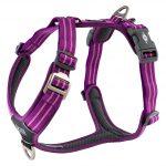 CWA-Harness-PurplePassion-V1