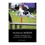 Workbook: Agility