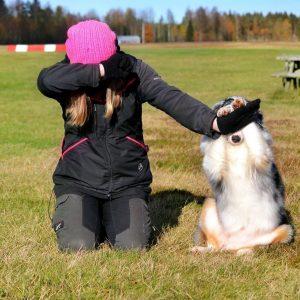 Trickträning med din hund
