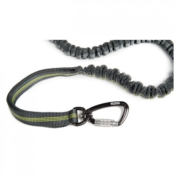 EQdog jogging leash