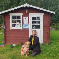 Hundfriskvård