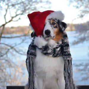 Överraskningspaket - julklapp