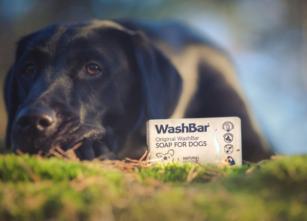 Original washbar soap