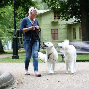 Unghundskurs med Christel Nilsson